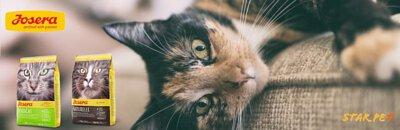 josera貓糧,josera cat food,貓咪,寵物,貓糧品牌,貓糧邊隻好,貓糧推薦,貓糧最好,貓糧最便,天然貓糧,無穀物貓糧,貓乾糧,脫水貓糧,feline,cat,online pet shop,cat food,cat dry food