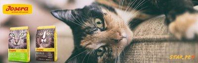 josera貓糧,josera cat food,josera,去毛球貓糧,防尿石貓糧,貓咪,貓糧品牌,貓糧邊隻好,貓糧推薦,貓糧最好,貓糧最便,天然貓糧,無穀物貓糧,貓乾糧,feline,cat,online pet shop,cat food