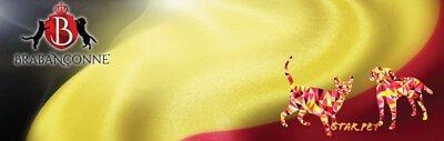 brabanconne狗糧,brabanconne,爸媽寵狗糧,爸媽寵,狗,寵物用品,狗糧品牌,狗糧邊隻好,狗糧推薦,狗糧最好,狗糧最便,天然狗糧,無穀物狗糧,狗乾糧,脫水狗糧,dog,hk online pet shop,dog food