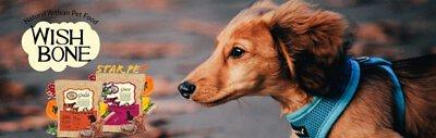 狗糧,Wishbone,紐西蘭狗糧,wishbone威斯邦,威斯邦狗糧,狗,寵物用品,狗糧品牌,狗糧邊隻好,狗糧推薦,狗糧最好,狗糧最便,天然狗糧,無穀物狗糧,狗乾糧,dog,hk online pet shop,dog food