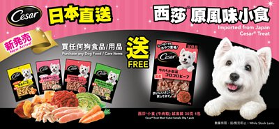 starpet,starpethk,star pet,starpet寵物,寵物用品,cesar,cesar西莎,西莎,pet,petshop,petshophk,