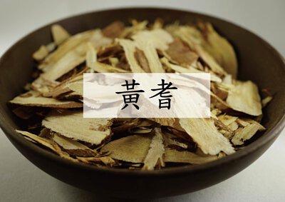 Astragalus membranaceus (黃耆)