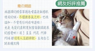 cat-blog01