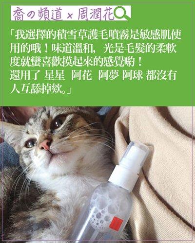 experience-cat04