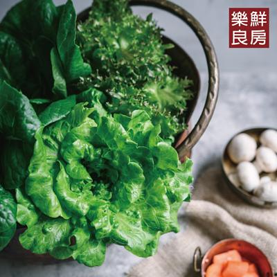樂鮮良房無毒水耕蔬菜
