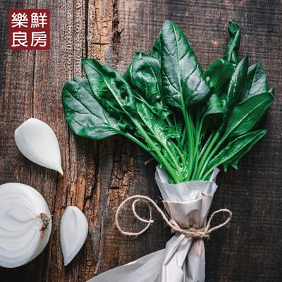 寶寶菠菜-樂鮮良房無毒水耕蔬菜
