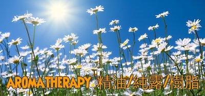 aromatherapy, 香薰精油