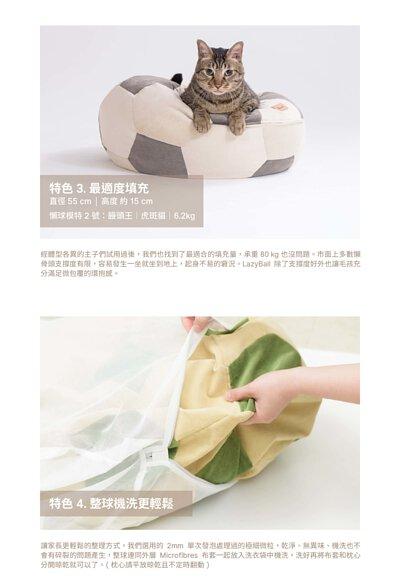 虎班貓在eterno寵物懶骨頭上,整球可以放在洗衣袋中直接機洗