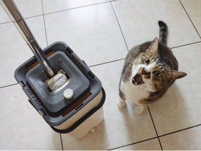 吸刮拖mini,拖把,清潔,掃地,生活用品,拖地,廚房拖,動物拖把,家用清潔,小孩拖把