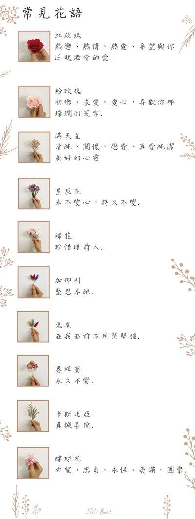 乾燥花介紹乾燥花花語