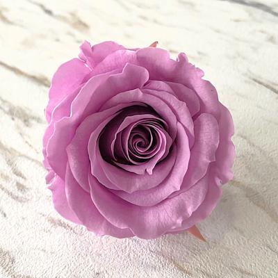 紫色永生玫瑰花就是紫色不凋玫瑰花