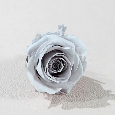 灰色永生玫瑰花就是灰色不凋玫瑰花