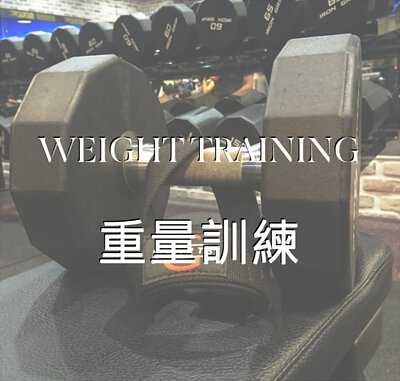 重訓 重量訓練 舉重 深蹲