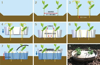 「水源寶」植樹簡單八步驟