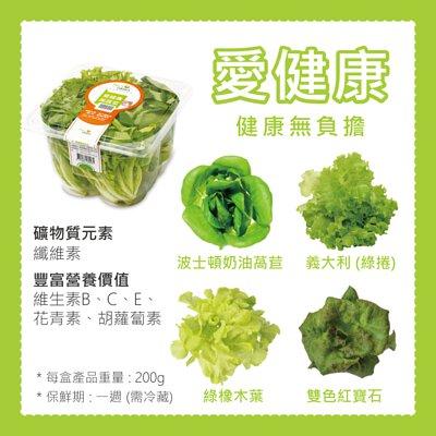 NICE GREEn美蔬菜 愛健康