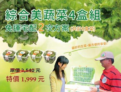 綜合美蔬菜四盒組 免運宅配兩次(共計八盒菜)