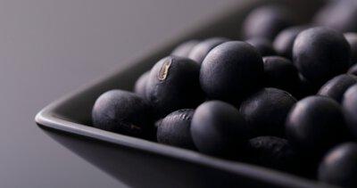 丹波黑大豆, 黑豆, 黑大豆