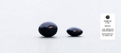 丹波黑大豆尺寸驚人,無基因改造,100粒一般黑豆約40克,丹波黑豆竟可重達80克。維生素E及抗氧化成分為一般黑豆2-3倍。