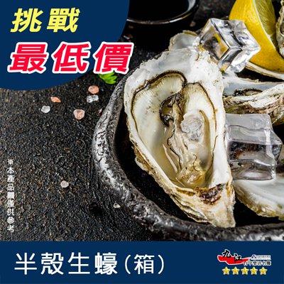 【九江】韓國半殼生蠔8~10cm(非生食) 【整箱下單區】