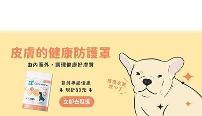 狗狗 皮膚,狗狗 皮膚紅,狗狗 皮膚癢,狗狗 皮膚病