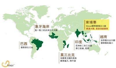 腰果在世界各國產地的分布及特色