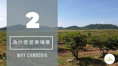 為什麼要選柬埔寨的腰果?