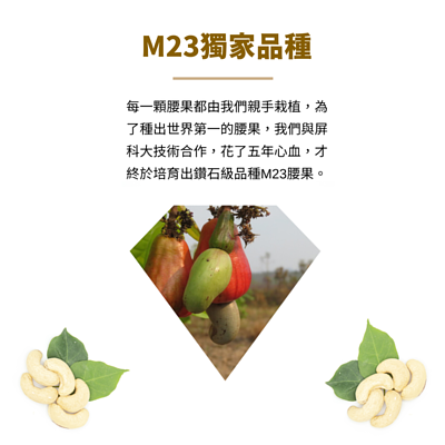 M23獨家品種