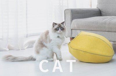 LIFEAPP喵星人-貓寵物用品