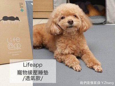我們是張家猋-LIFEAPP經典透氣睡墊