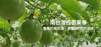南台灣百香果季