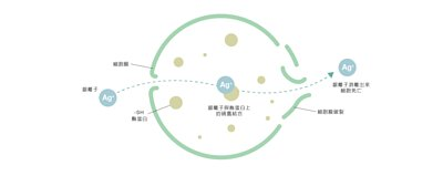 Aurabeat AG+ used Silver Ion to eliminate virus
