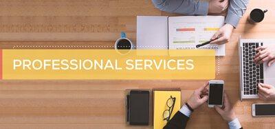 專業服務,大公司,企業,專業,專門,領域