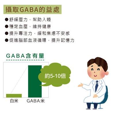 STAAKE -GABA