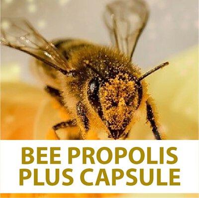 bee flower, royal jelly, bee pollen, bee propolis