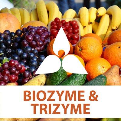 digestive enzymes, biozyme, trizyme