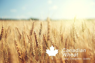 localoca 減醣減卡豆渣輕烘焙,採用頂級加拿大一級西部紅春麥(CWRS)研磨而成麵粉。