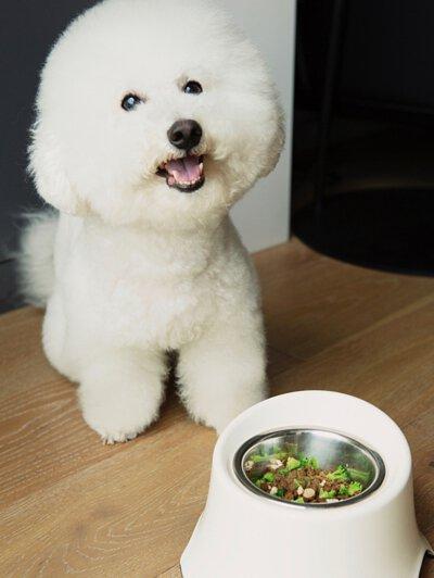 Pet Pet Premier 兩款產品都係由100%澳洲製造,純天然無副作用,由澳洲獸醫及營養專家為狗狗精心訂製。生產時會抽走狗狗討厭的氣味,所以口味好啱狗狗食