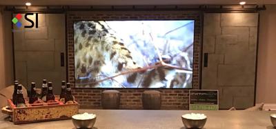 Aria Audio 雅詠音響代理的投影幕品牌 Projector Brand Screen Innovations 固定幕 Fixed Screen