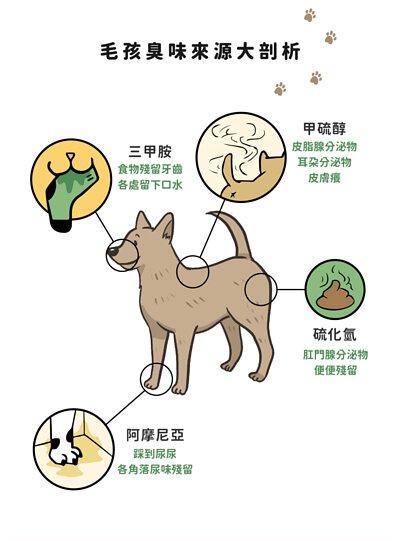 毛時光Maomory-毛博士系列-無香精淨味噴霧,寵物除臭,除臭噴霧
