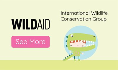 yum me play partner, wildaid, end the trade, wildlife conservation