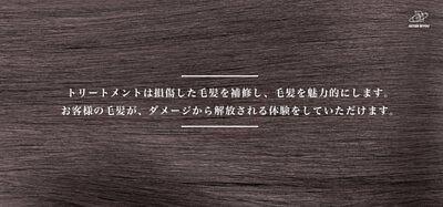 日本亞壽特美容 沙龍級修護護髮素 Treatment